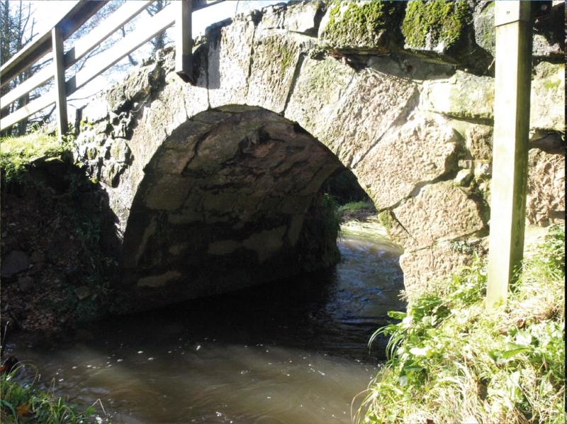 Puente Salas 2